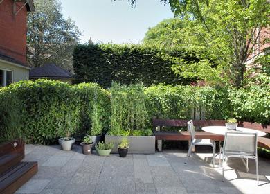 Bedford Road Garden