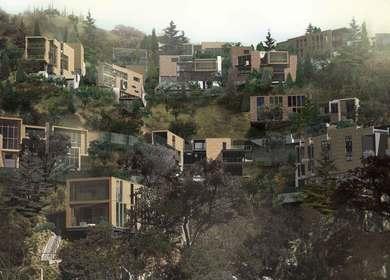 New Leaf Hills