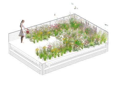 Brooklyn Green Roof 2014