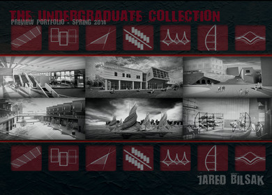 The Undergraduate Collection - Preview
