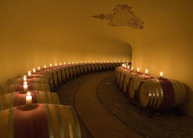 Winery in Chianti