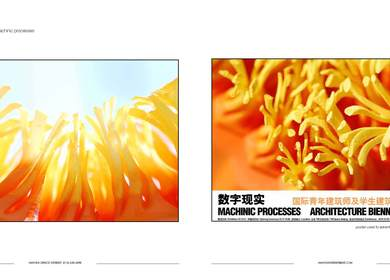 MACHINIC PROCESSES