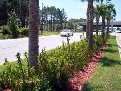 City of Haines City, FDOT Highway Improvements