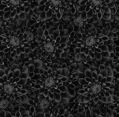 Black Flower Surface - Print for framing - Wallpaper
