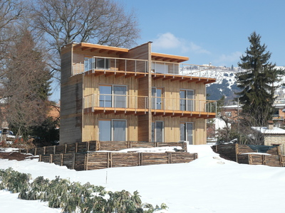 Semi-Detached Timber Eco-House