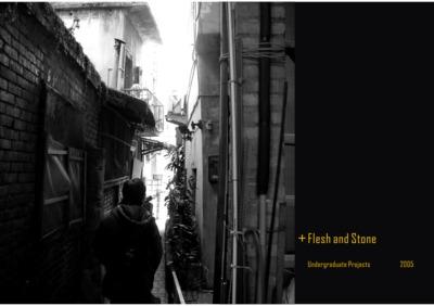 Flesh and Stone - Urban Design Project