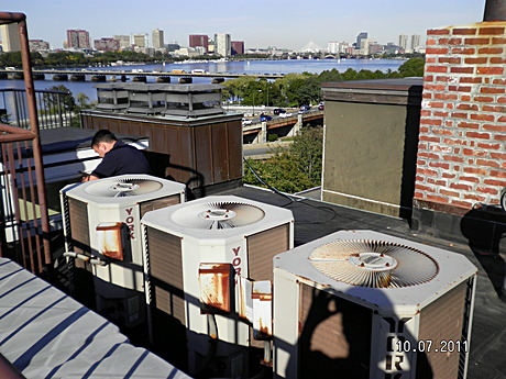 Roof Deck - Back Bay Boston, MA