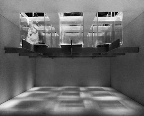 ModelT2 : A Light-Filtering Box