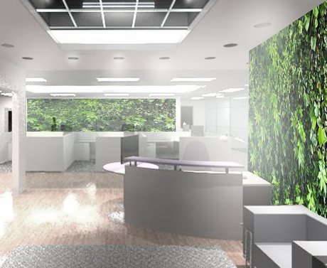 Office green walls