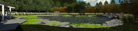 environmental pond