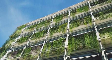 FAU Green Facade
