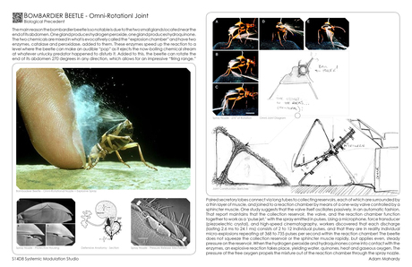 Bomb Beetle - Construction Methods (Joint)