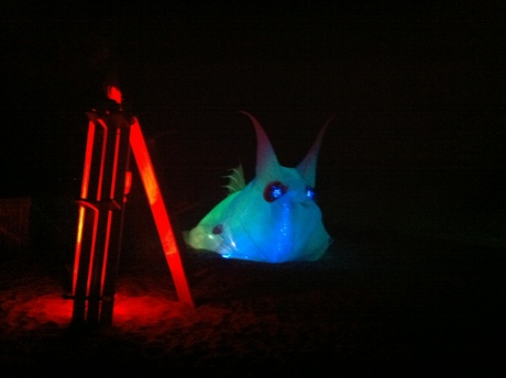 My inflateable is enliving the night at the beach @10daysofart.org
