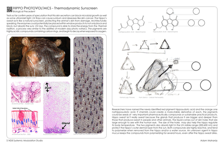 Hippos - Thermal Dynamic + Photo Voltaic skin screen.