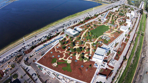 Facebook's green roof, viewed from above. FACEBOOK Gallery Image. Image via wired.com.