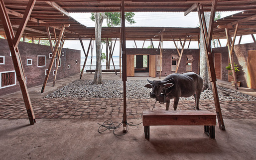 A buffalo parked outside waiting for its owner (Photo: Pasi Aalto / pasiaalto.com)