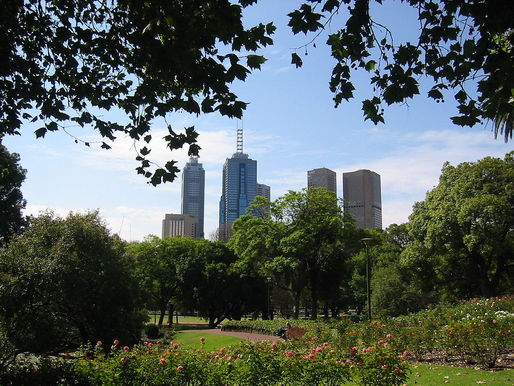 In Melbourne, trees have their own email addresses. Just keep them away from Tinder. (Photo: Wikipedia)