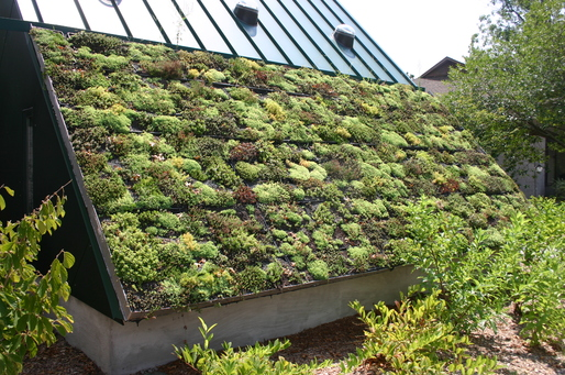 An example of a green roof project via Wikipedia.