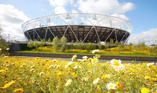 Londons Olympic venues challenge architects