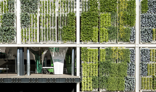 """Ten Top Images on Archinects """"Biophilia"""" Pinterest Board"""