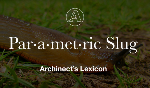 "Archinects Lexicon: ""Parametric Slug"""