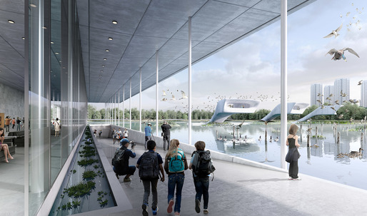 "McGregor Coxall to design ""bird airport"" wetland park in Tianjin"