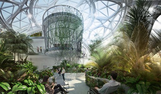 Forget ball pits – Amazon is growing over 3,000 plant species to fill its new downtown Seattle HQ