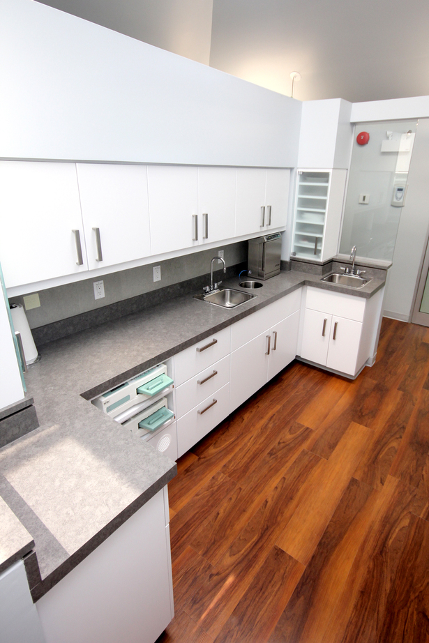 The custom cabinetry of the sterilization area