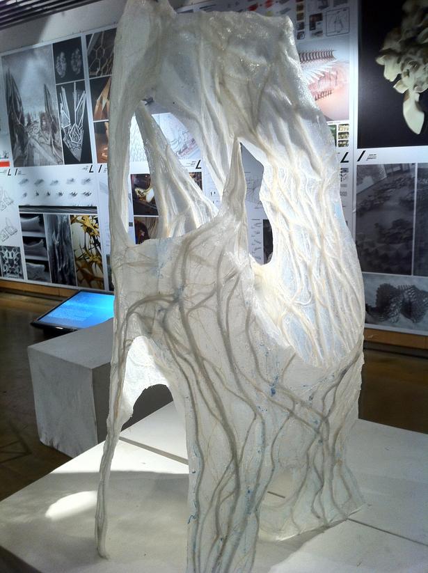 3d Form Model Study