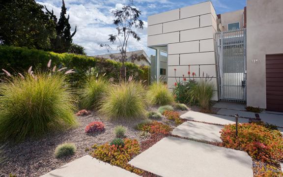 Contemporary landscape design jordan eckerling landscape for Low water garden design