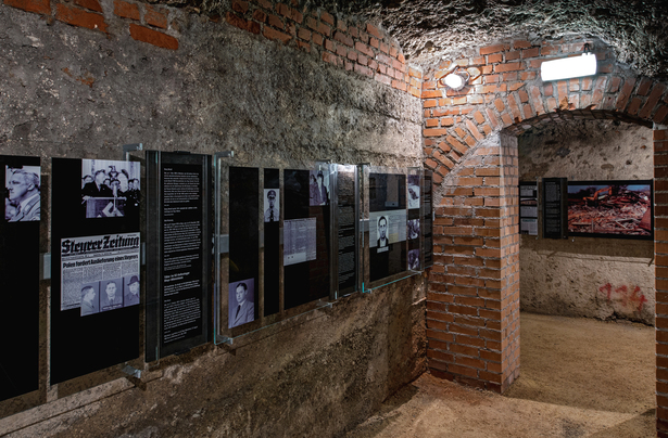 "Perpetrator Room: When entering the room, along with very minimalistic representations of the individual ""perpetrator profiles"", a blow-up colour photo is visible outside the room. It shows the demolition of the last surviving barrack of the former Steyr-Münichholz concentration camp in 1993."