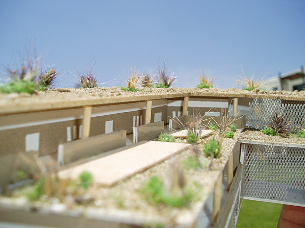 View of the vegetated roof and classroom hallway