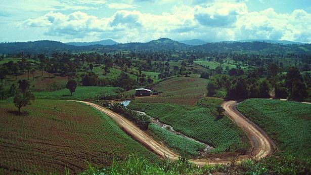 Loei, Thailand - Countryside