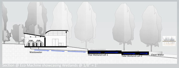 Conservation Component Section and Wetlands