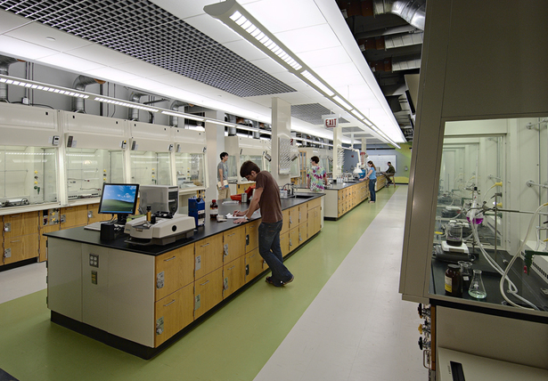 Organinc Chemistry Instruction Lab (Non Majors)