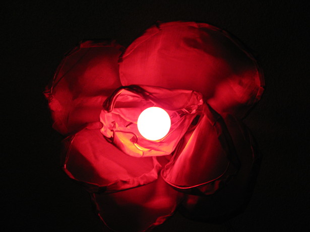 Red ceramic bulb, up view