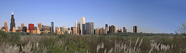 The Richard M Daley Wetlands act as a living machine, filtering Chicago's river water and delivering clean water to the lake. The wetlands also double as a large nature reserve, allowing citizens and tourists to escape the noise and action of the city and retreat to this new urban oasis.