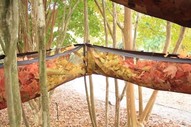 Leaf Holders