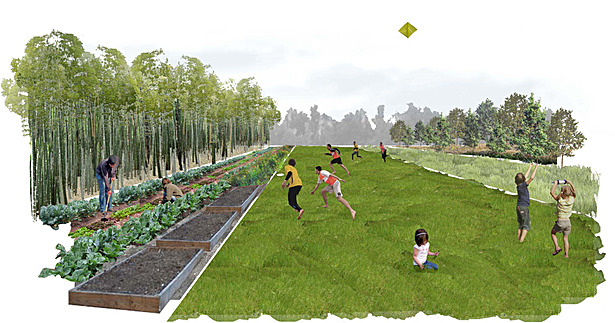 Long Lots Perspective - Community Garden and Recreation Lawn