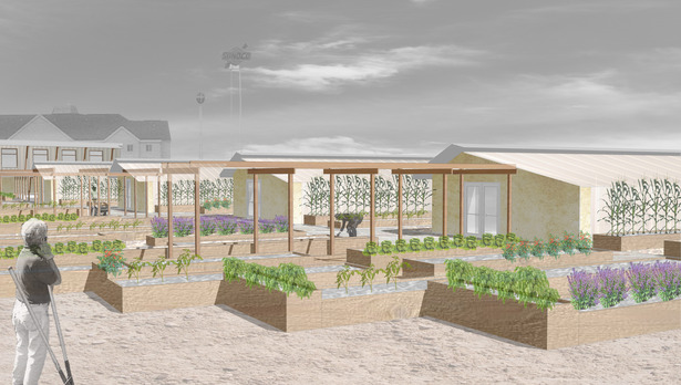 Site Rendering - Community Gardens and Greenhouses
