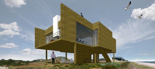 Flat House - © 2014 Andrea Salvini