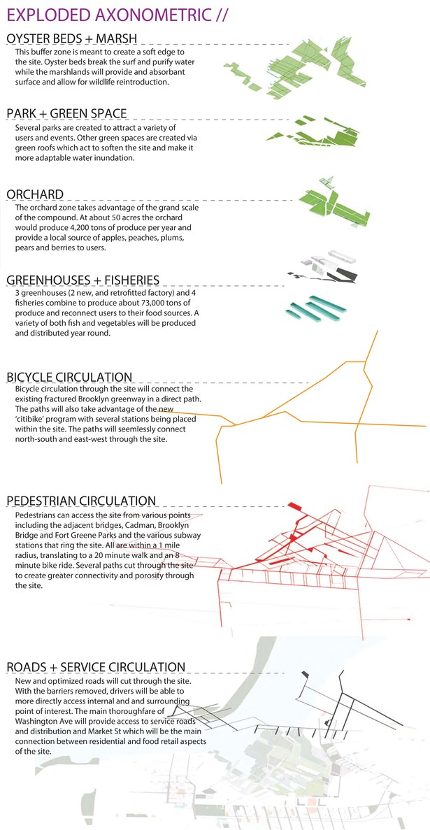 Axonometric of living systems