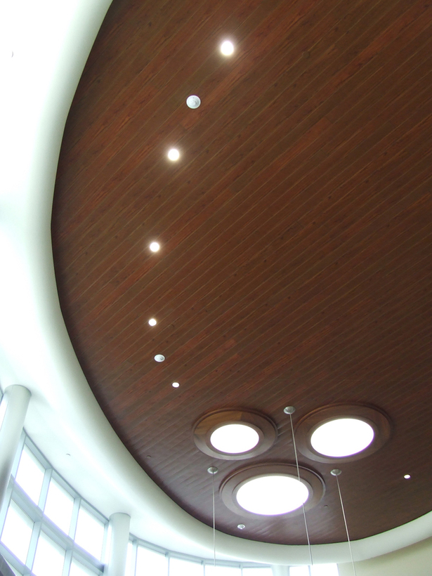 Interior 1 - Outpatient Lobby - Soffit + Skylights