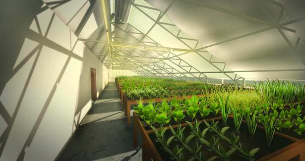 Interior Greenhouse