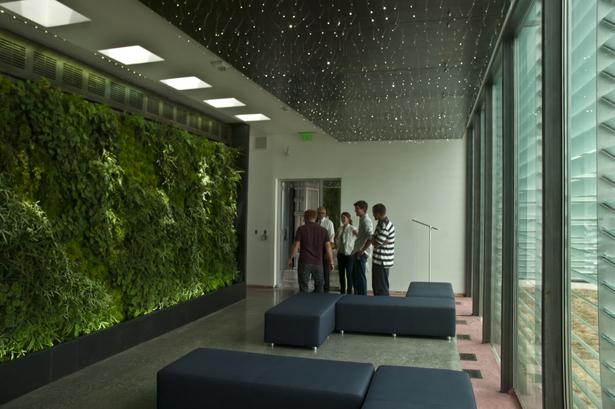 Interior Lobby Continuous Green Wall