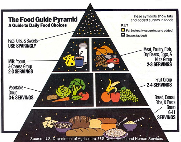 The Food Pyramid - healthier / more essential foods toward bottom