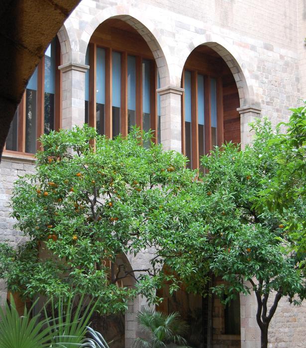 Museu Frederic Mares_ SVArquitectura _ Santiago Vives
