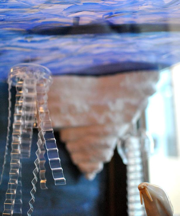 Arctic Jellyfish
