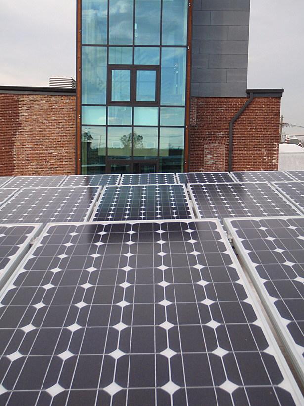 81 Solar Panels