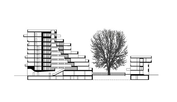 Claus en Kaan Architecten / Section